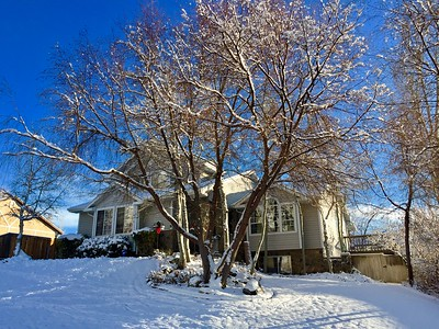 2016-12-30 – As much as I dislike shoveling the snow, I have to admit that it does make the yard beautiful, especially when the sky is this bright blue.