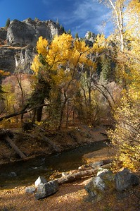 Fall up American Fork Canyon. This was shot with a wide angle lens and is best viewd larger.