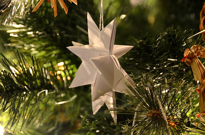 2012-12-22 ––– I'm really getting into the Christmas spirit. Our Christmas tree is really simple with lots of Scandinavian ornaments. These white paper stars are one of my favorites.
