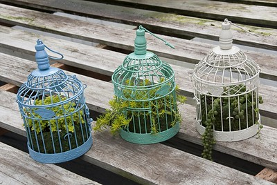 SOOOO cute - Small Vintage Bird Cages