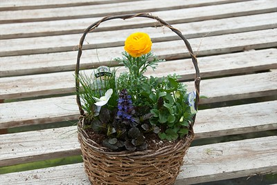 Wicker Basket w/ Handle
