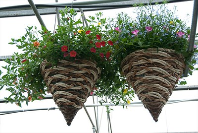 "14"" Wicker Cone Planter"
