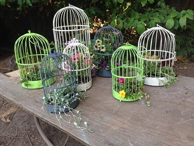 NEW design and colors on this years Bird Cages! We have ivory, green and grey. The green is darker than this photo shot with my phone - it is hemlock. I LOVE the feet!