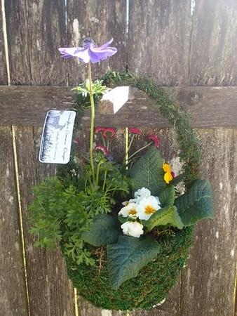 Medium Moss Basket o' Spring Color