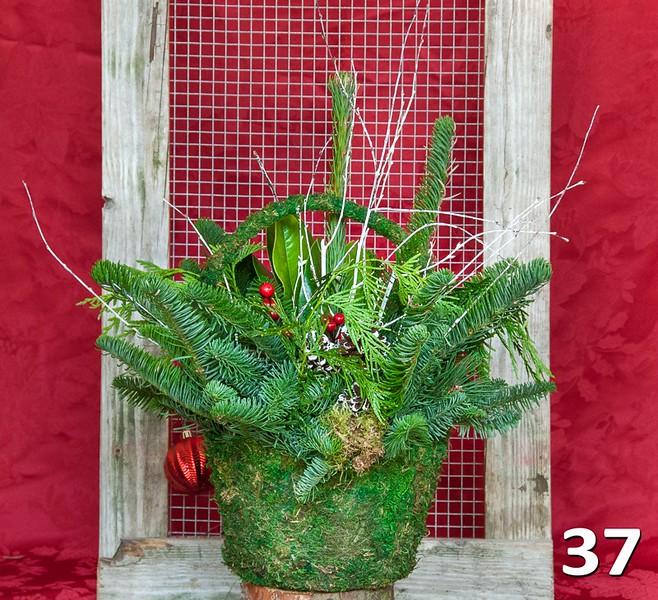 #37 - Medium moss basket full of PNW fresh greens and seasonal accents.