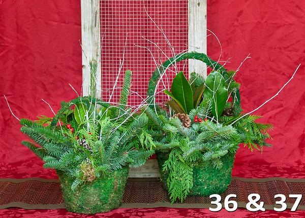 #36 & 37 - Large & medium moss basket full of PNW fresh greens and seasonal accents.