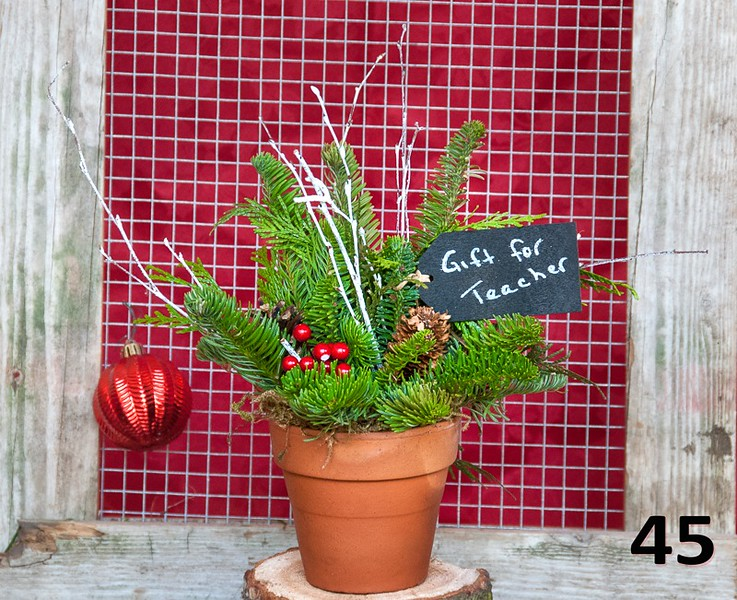 """#45 - 4.5"""" terra cotta pot full of PNW fresh greens, seasonal accents, and chalkboard gift tag. Makes a great gift!"""