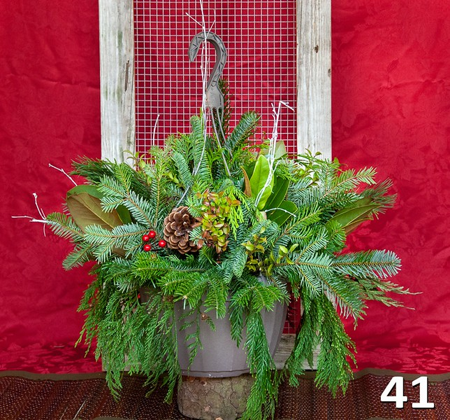 """#41 - 12"""" hanging basket full of PNW fresh greens and seasonal accents."""