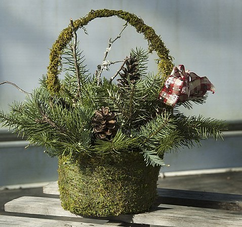 Large Moss Basket of Greens