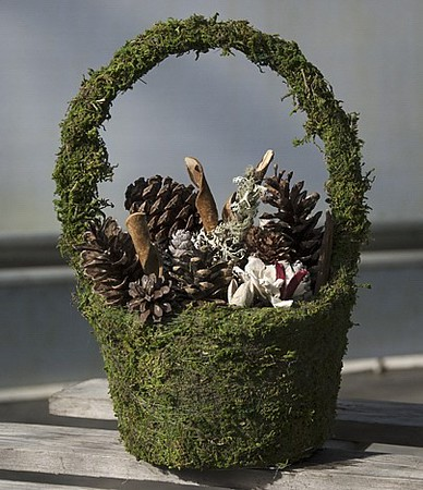 Large Moss Basket of Cones