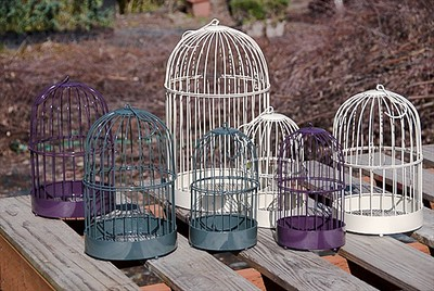 New Bird Cages for 2016 - Grape is new color!