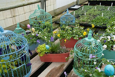 Colorful Vintage Bird Cages and other fun STUFF!
