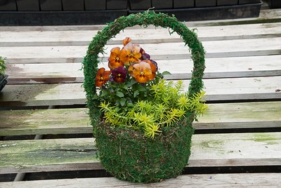 Small Moss Basket with Handle