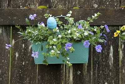 Hammered Tin Wall Basket Hemlock Green is so very Keen!