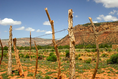 Old West fence