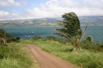 Windy Lake Arenal