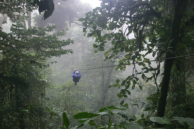 There goes Michael zipping through the forest canopy!