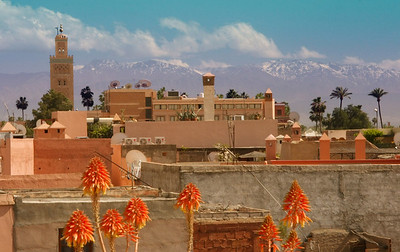 View from the terrace of our riad of the Koutoubia Mosque and the Atlas mountains - Marrakech