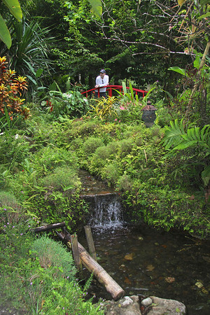 Tropical Gardens Soufriere, St Lucia