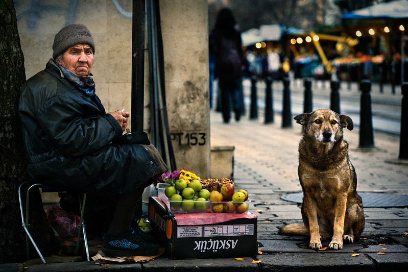 Man's Best Friend 3rd Place Winner, Denis Buchel ©, Bulgaria