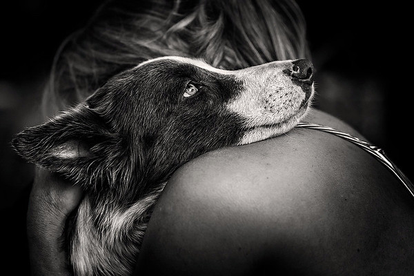 Man's Best Friend 1st Place Winner, Carlos Aliperti ©, Brazil