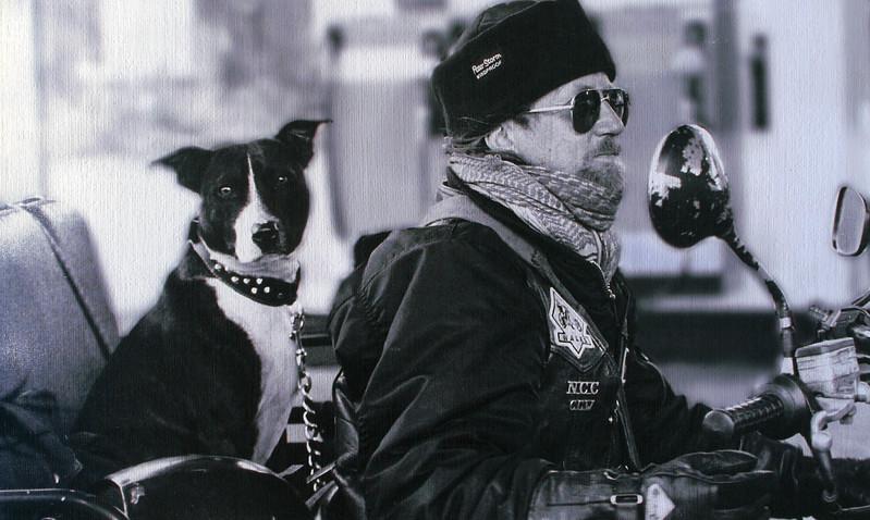 Man's Best Friend 4th Place Winner, Eileen Sutherland ©, UK