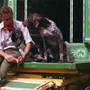 Man's Best Friend 5th Place Winner, Valerie Maskell ©, UK