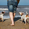 Man's Best Friend 2nd Place Winner, Jo-Ann Essex ©, UK