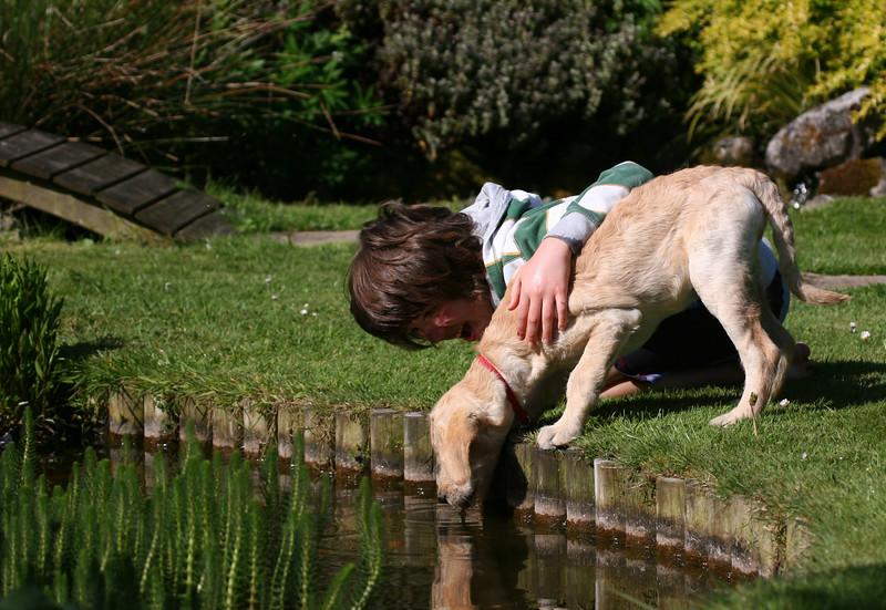 Man's Best Friend 3rd Place Winner, John Carrel ©, UK
