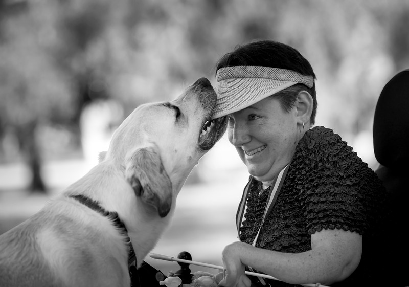 Assistance Dogs and Dogs Charities 2nd Place Winner, Diana Andersen ©, Australia