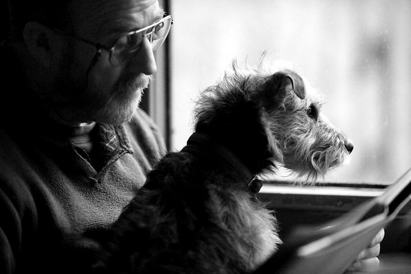 Man's Best Friend 1st Place Winner, Fiona Sami ©, UK