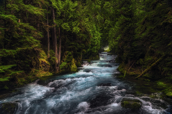 McKenzie River, Oregon