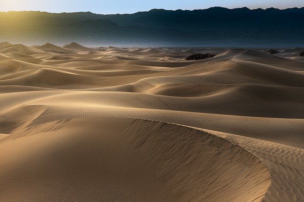 Mesquite Dunes, late afternoon