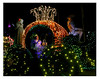 DISNEYLAND'S ELECTRIC LIGHT PARADE-03<br /> James McArthur<br /> <br /> Honorable Mention - Photojournalism
