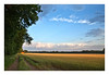 Wheat field<br /> 5	4	5	-	2	3	2	-	4	4	4	-	33	<br /> accepted	<br /> Judge's Comment: A little more foreground might have helped.	<br /> Neil Marcus