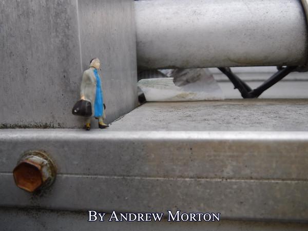 Morton, Andrew1