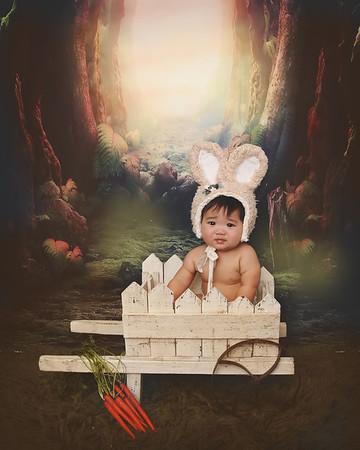 Bunny Minis