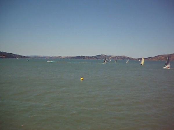 Division D Start 2012 Pacific Cup. 18 July.