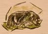 Seltzer, Phyllis - Rhinoceros, 1960