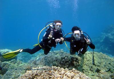 intro divers (体験ダイバー達)