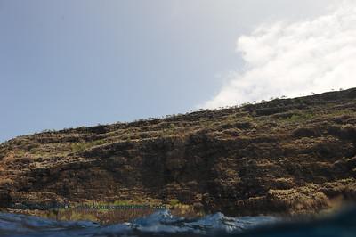 kealakekua cliffs (ケアラケクア湾の崖)