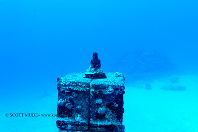 underwater buddha (水中仏像)