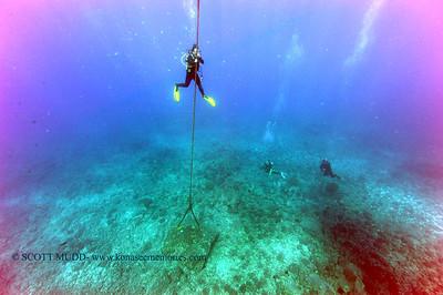 diver descent (ダイバー潜航)