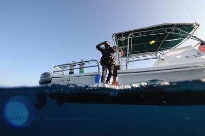 diver entry (ダイバーエントリー)