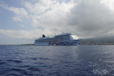 cruise ship (クルーズシップ)