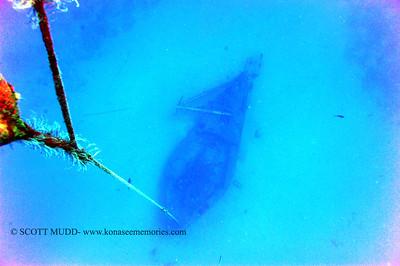 underwater wreck (沈船)