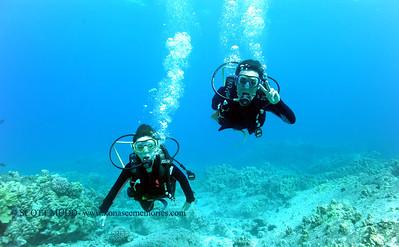 divers(ダイバー達)