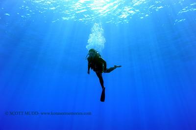 blue water dive (ブルーウォーターダイブ)