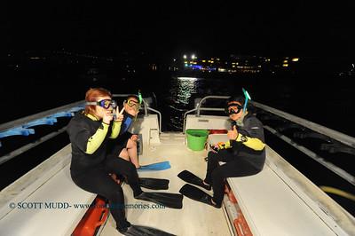 manta night snorkel (マンタナイトシュノーケル)