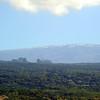 hawaiian snow (ハワイの雪)